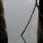 На рибарския кей в Монтерей. Снимка: Иван Бакалов